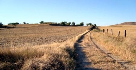 Vereda hacia Fuensaldaña