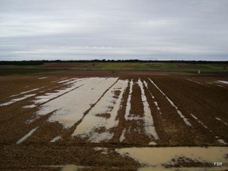 Campos de agua