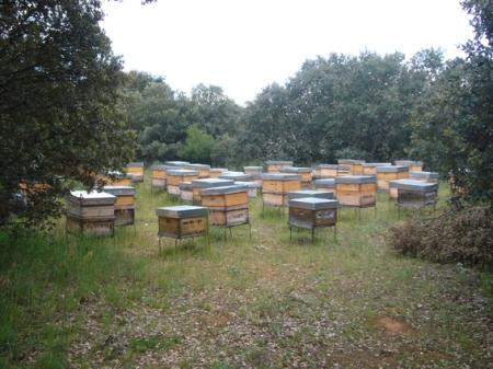La fábrica de miel