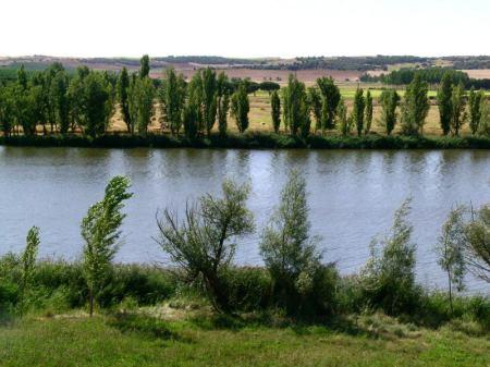 Cerca de Castronuño
