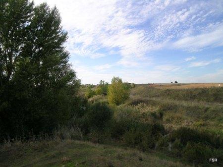 El Valderaduey viene por la derecha y el Sequillo está detrás del árbol de la izquierda