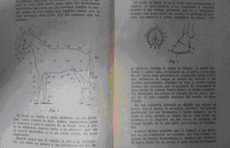 Reglamento de instrucción de Artillería de Montaña a Lomo, 1950
