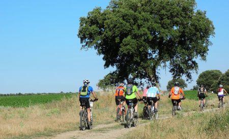 Esta encina nunca vio tantos ciclistas