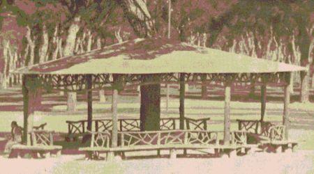 Parada del autobús del Pinar sobre 1965