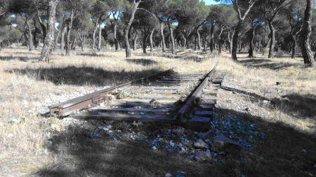 Vía de acceso al Parque