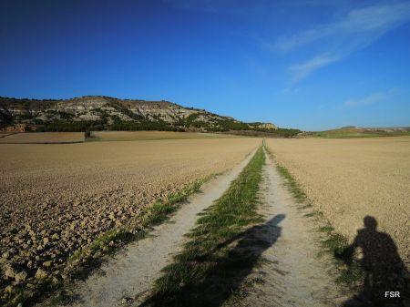 Antiguo camino de Cevico