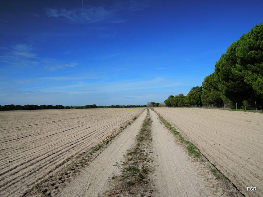 Tierra de arenas