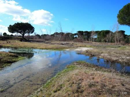 Vado en el arroyo Malucas