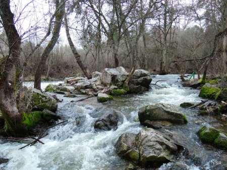Río Cega cerca del molino del Ladrón