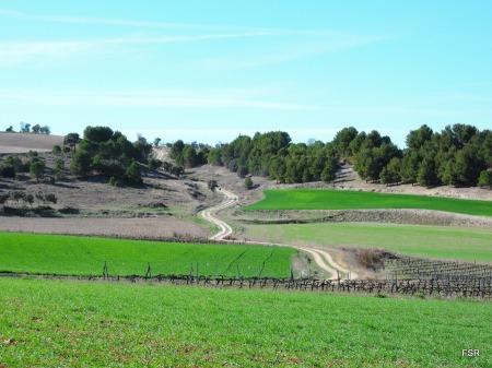 Subida al monte por la Cañada