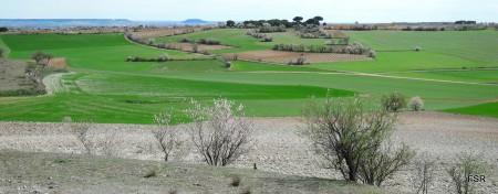 Desde Trasdelanza. Al fondo, Valladolid
