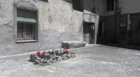 Jardincillo en Ciguñuela