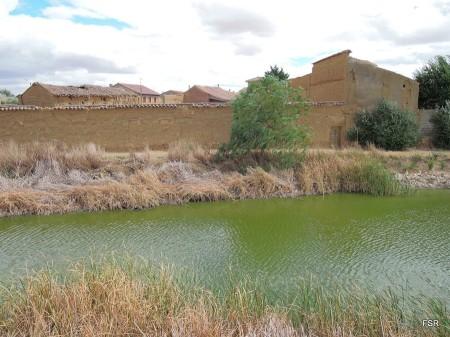 Laguna en Pozuelo