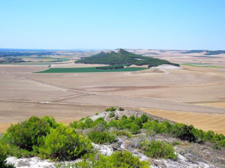 Las mamblas de Tudela desde la de Villabáñez