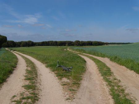 Dos caminos cerca de Alcazarén