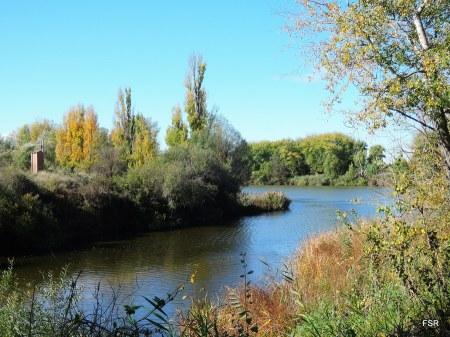 Actual desembocadura del Adaja en el Duero. Hoy lleva las aguas del Eresma y del Voltoya