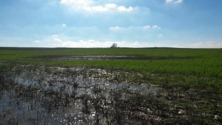 Tierras borrachas... de agua
