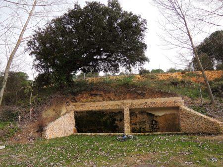 Fuente del Soto