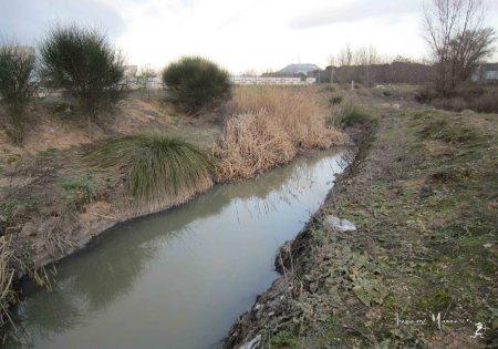 Retazos de dignidad entre aguas pardas