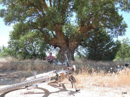 El Roble y la bici