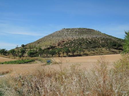 Cerro cortejado por almendros