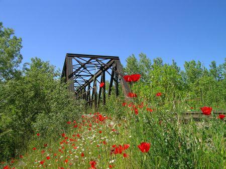 el-puente-de-hierro