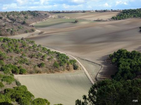 Valle del Caserío de Peñalba